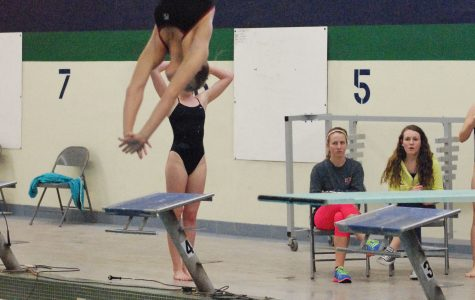 Divers contribute to overall team success