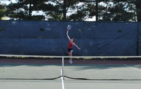 Junior Places Third at State in Tennis