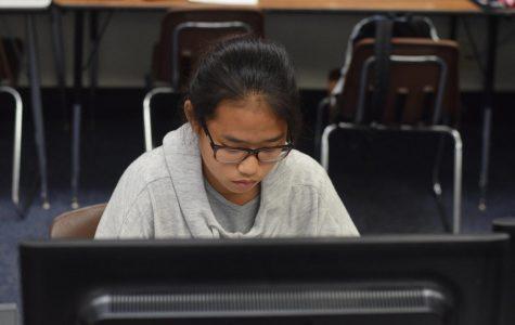 Freshmen Delve Into Mandarin Online Class