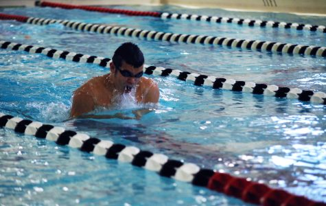 Swimmers prepare for state meet