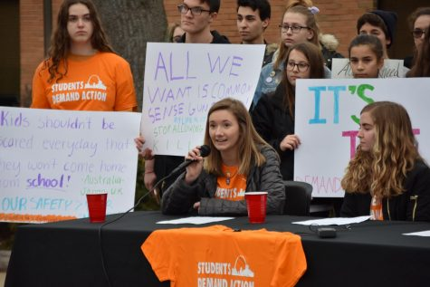 Students Take Action Against Gun Violence