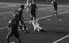 Champs Return to New Year