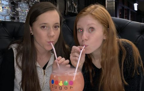 The Sugar Factory Food Review