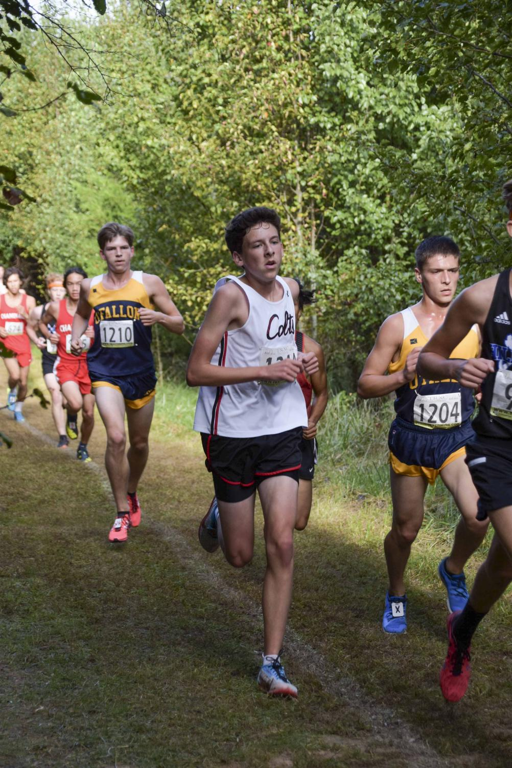 Junior Jackson Shanker runs the final stretch at the Suburban Conference meet.