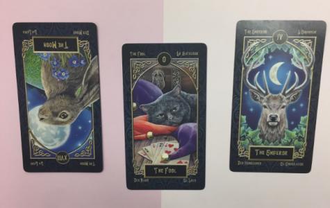 Tarot Prediction – Month of November