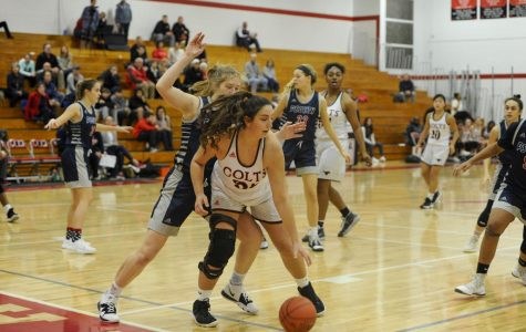 Senior Claudia Cooke posting up Parkway South defender. Girl's Basketball dominates South.