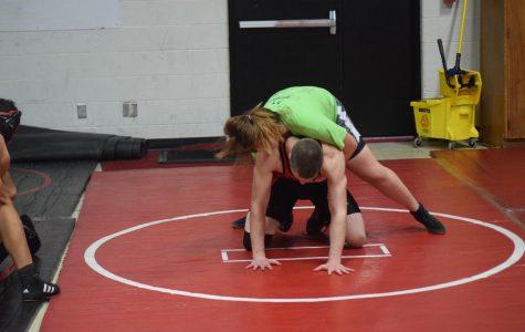Wrestling with Gender Stereotypes