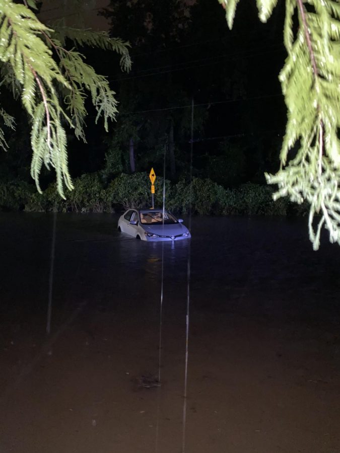 Taylor Stern's car in the flood. The police recommended she take these pictures for insurance.