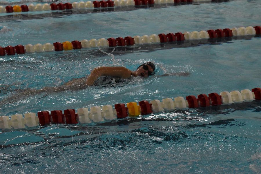 Bain swims freestyle in Centrals pool ay the meet against Pattonville on Dec. 16.